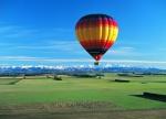 balloon 2.jpg