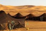 camel-repos.jpg